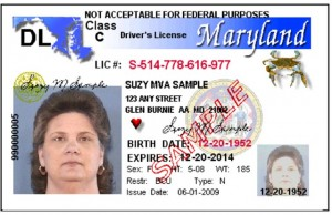 nyc tour guide license renewal